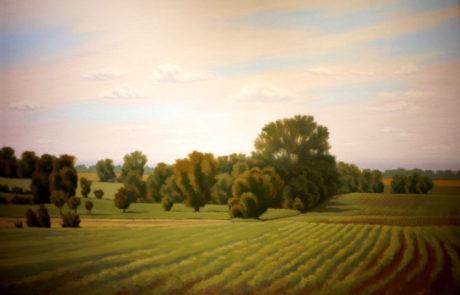 Bountiful Earth by Richard Krogstad